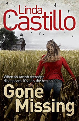 9781447202158: Gone Missing (Kate Burkholder series)