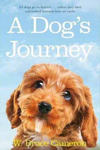 9781447218906: A Dog's Journey