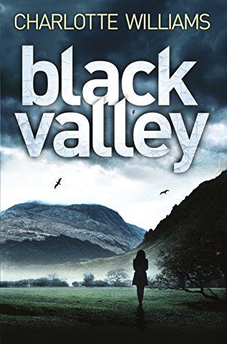 9781447223573: Black Valley