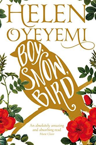 9781447237143: Boy, Snow, Bird