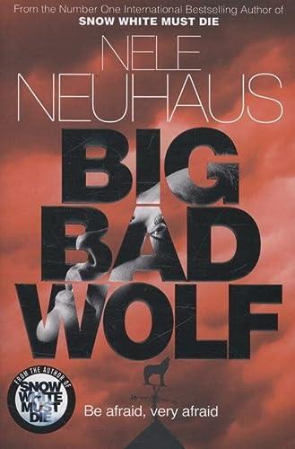 9781447251255: Big Bad Wolf