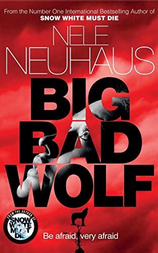 9781447251279: Big Bad Wolf