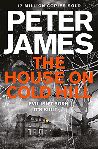 9781447255949: The House on Cold Hill