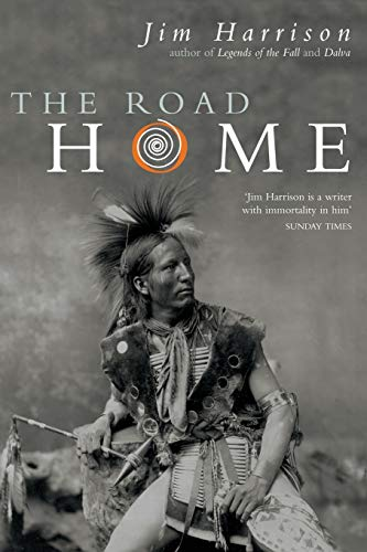 9781447259732: The Road Home