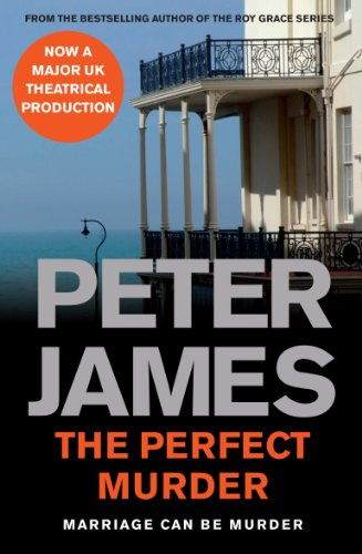 9781447266037: The Perfect Murder