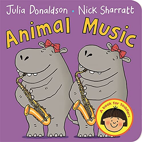 9781447276791: Animal Music