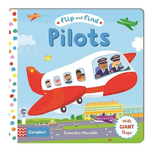 9781447277170: Pilots (Flip and Find)