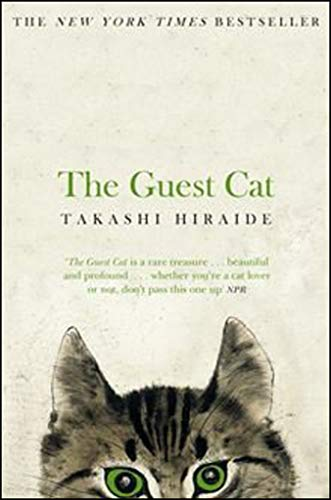 9781447279402: The Guest Cat