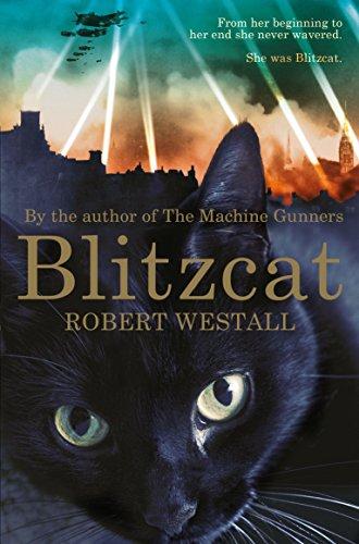 9781447284604: Blitzcat