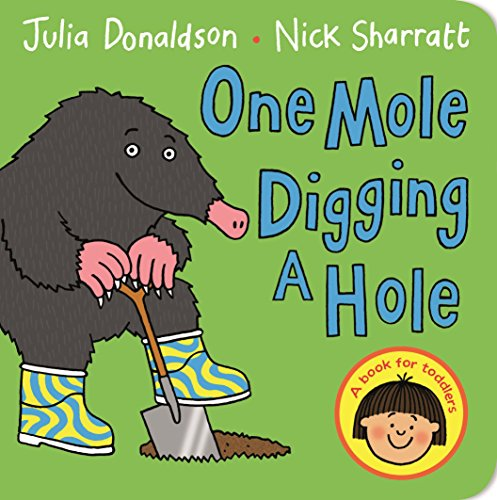 9781447287902: One Mole Digging A Hole