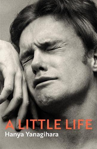 9781447294825: A Little Life