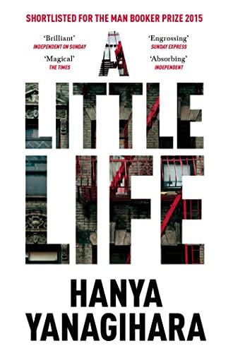 9781447294832: Little Life