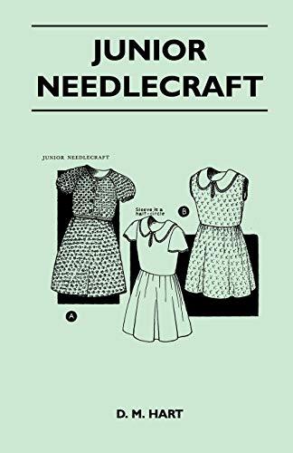 9781447401049: Junior Needlecraft