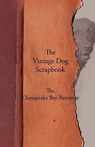 9781447428053: The Vintage Dog Scrapbook - The Chesapeake Bay Retriever