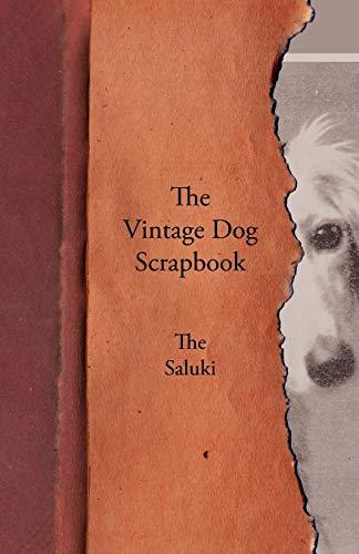 The Vintage Dog Scrapbook - The Saluki