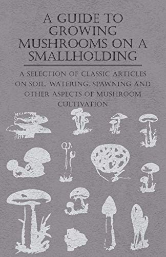 9781447454182: A Guide to Growing Mushrooms on a Smallholding -