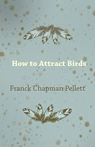 How to Attract Birds (Paperback)