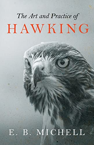 9781447464488: The Art and Practice of Hawking