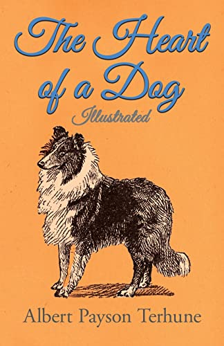 9781447472483: The Heart of a Dog - Illustrated