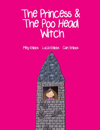 9781447528012: The Princess and The Poo Head Witch