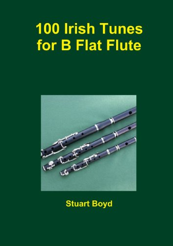 9781447812944: Irish Tunes For B Flat Flute