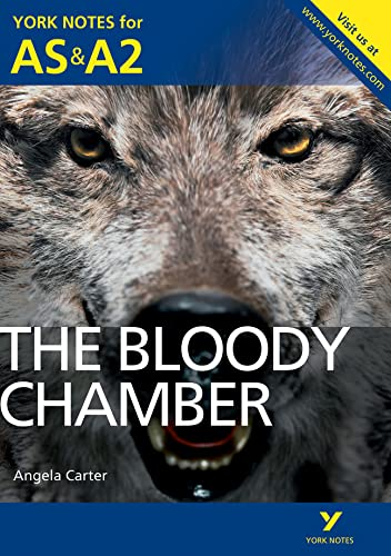 9781447913153: Bloody Chamber (York Notes for As & A2)