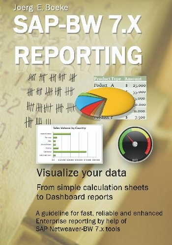 9781448606269: SAP BW 7.x Reporting - Visualize your data: Netweaver BW 7.x Reporting, visualize your data and create performance Dashboards and Analysis