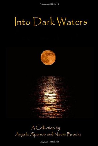 9781448680566: Into Dark Waters