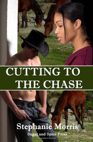 9781448691494: Cutting to the Chase