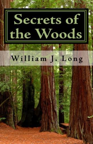9781448697793: Secrets of the Woods