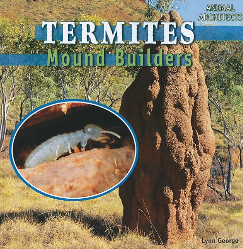 9781448813537: Termites: Mound Builders (Animal Architects)
