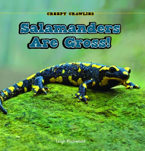 Salamanders Are Gross! (Paperback): Leigh Rockwood
