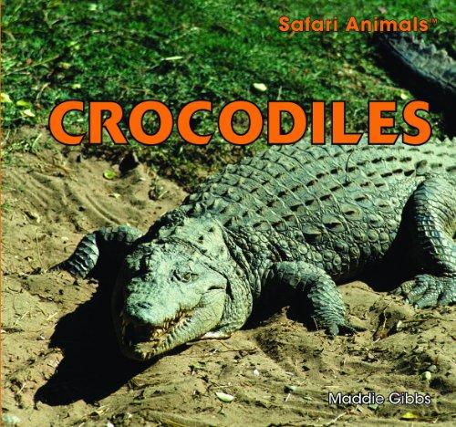 Crocodiles: Maddie Gibbs