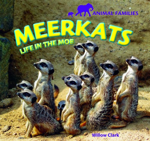 Meerkats: Life in the Mob (Library Binding): Willow Clark