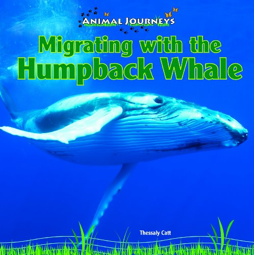 Migrating with the Humpback Whale (Library Binding): Thessaly Catt