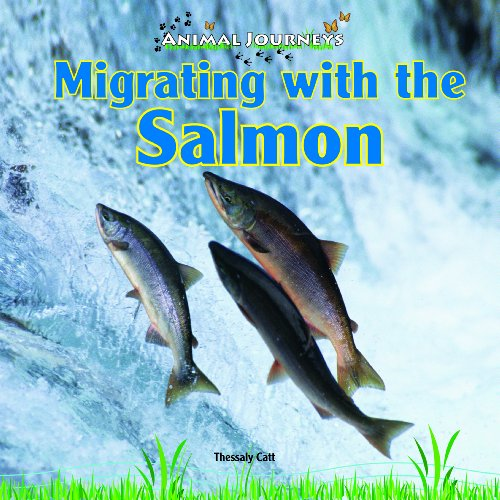 Migrating with the Salmon (Animal Journeys): Catt, Thessaly
