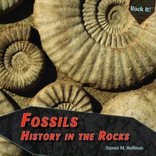 Fossils: History in the Rocks (Library Binding): Steven M. Hoffman