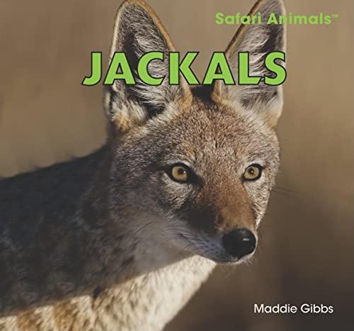 Jackals (Safari Animals): Maddie Gibbs