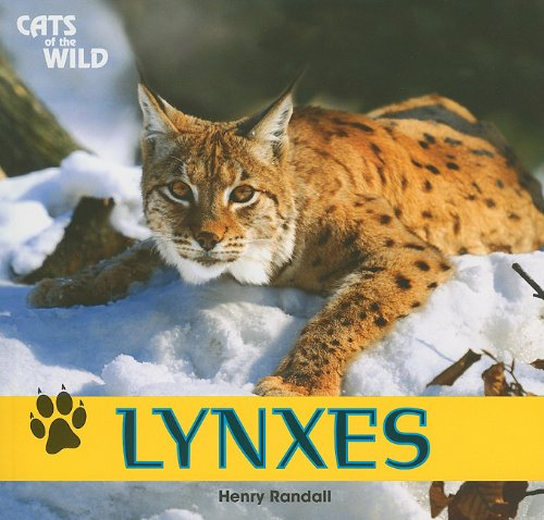 9781448826193: Lynxes (Cats of the Wild)