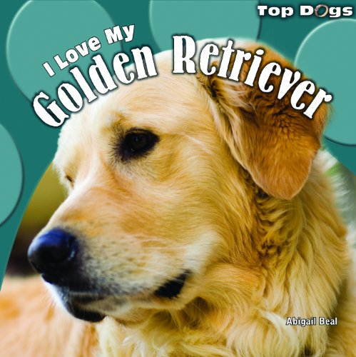 9781448826568: I Love My Golden Retriever (Top Dogs (Paper))