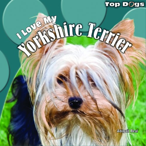 9781448826605: I Love My Yorkshire Terrier (Top Dogs)