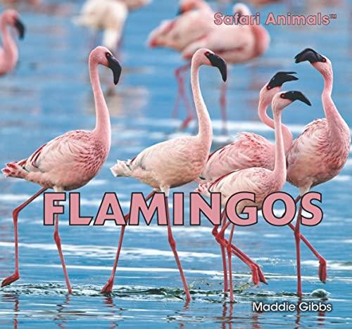 9781448831852: Flamingos (Safari Animals (Paperback))