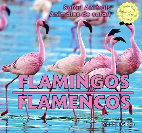 9781448832132: Flamingos / Flamencos (Safari Animals / Animales De Safari)