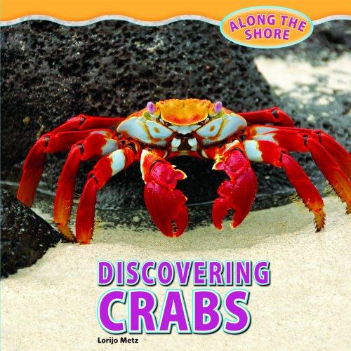 Discovering Crabs (Along the Shore): Metz, Lorijo