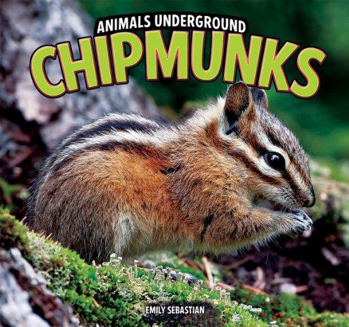 9781448850587: Chipmunks (Animals Underground)