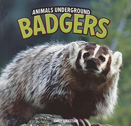 9781448850600: Badgers (Animals Underground)