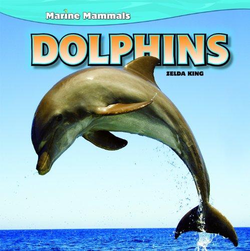 9781448851379: Dolphins (Marine Mammals)