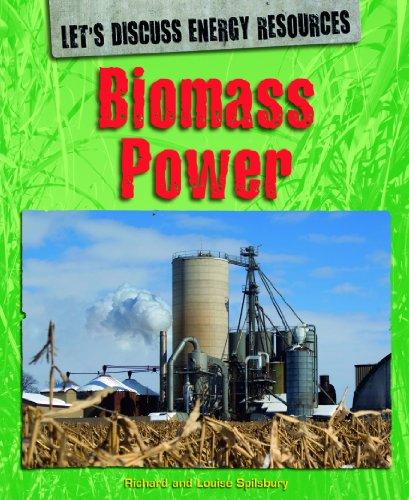 Biomass Power (Library Binding): Richard Spilsbury