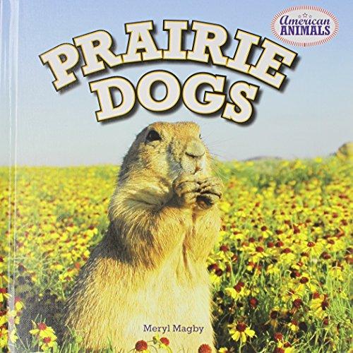 Prairie Dogs (American Animals): Meryl Magby