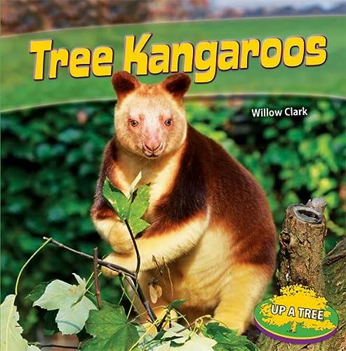 9781448863372: Tree Kangaroos (Up a Tree)